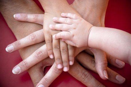 Parent & Carer Hub