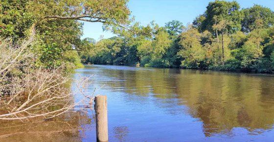 Eccleston River Walk
