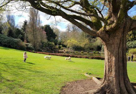 Walton Hall And Gardens