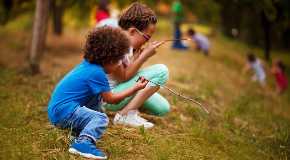 Forest Explorers Summer Holiday Club
