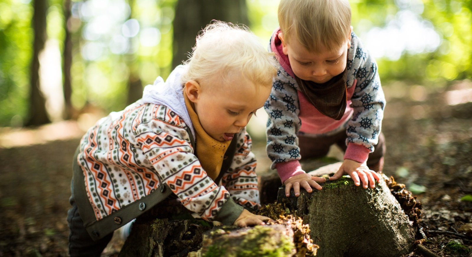 Nature Tots At Marbury Country Park, Northwich