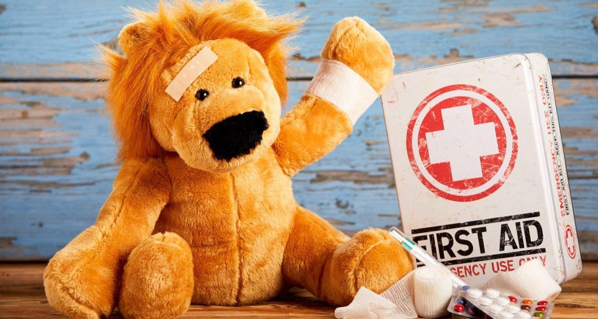 Mini First Aid Wrexham, Flintshire & Chester