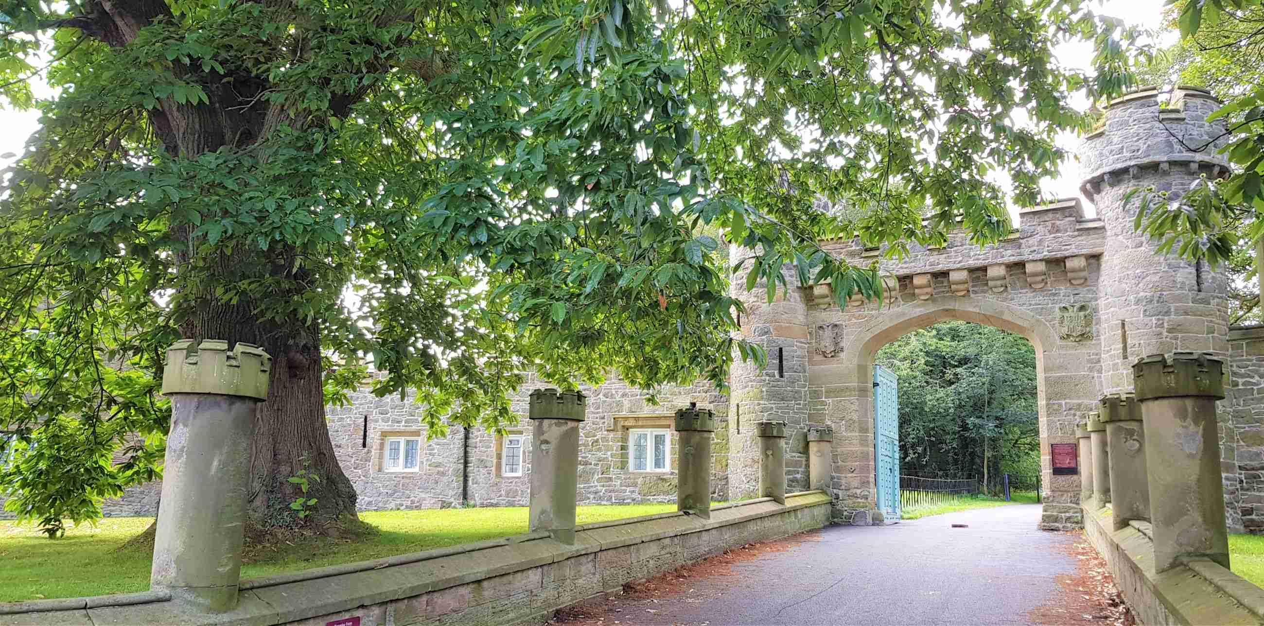 Hawarden Castle And Adjacent Woodland