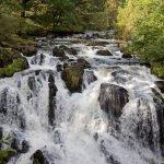 Swallow Falls Waterfall / RHAEADR EWYNNOL