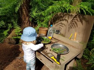 Clued In With Kids Review - Forest Explorers, Delamere