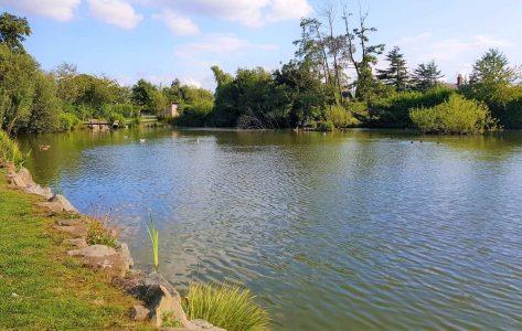 Gresford Lake And Gresford Park