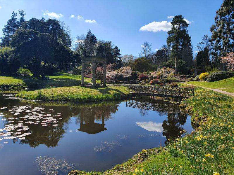 Our after school lakeside adventure - A review of Cholmondeley Castle gardens